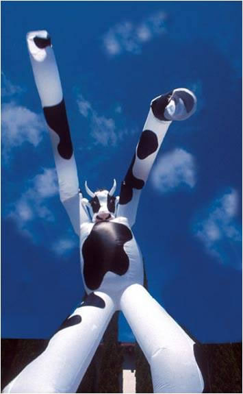 Fan That Blows Cold Air >> Air Dancer   Mr Inflatables