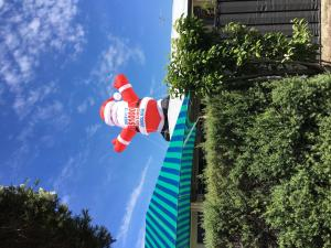 characters-and-mascots-inflatable-022