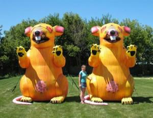 characters-and-mascots-inflatable-056